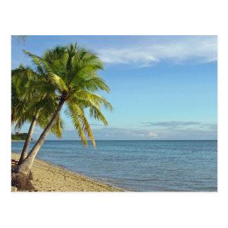 Playa y palmeras del Fijian Postal