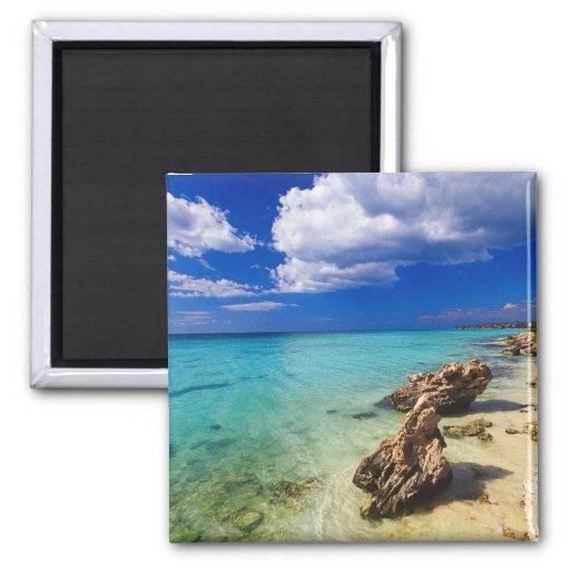 Playas, Barahona, República Dominicana, 3 Imán De Nevera