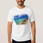 Playas, Barahona, República Dominicana, 3 Polera