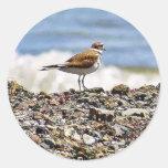 Playas de los océanos de los pájaros etiqueta redonda