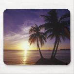 Playas en Negril, Jamaica 3 Alfombrilla De Ratón