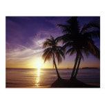 Playas en Negril, Jamaica 3 Postal