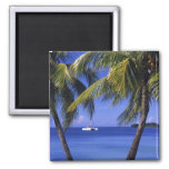 Playas en Negril, Jamaica Imán Cuadrado