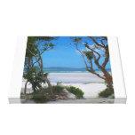 Playas románticas lona estirada galerías