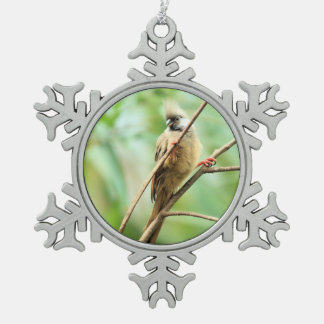 Playful Adorable Cute Brown Speckled Mousebird Snowflake Pewter Christmas Ornament