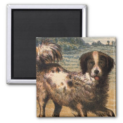Playful Brown and Cream Haired Pet Dog Magnet