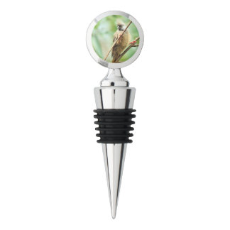 Playful Brown Speckled Mousebird Africa Bird Wine Stopper