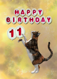Image result for happy 11th birthday cat