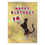 Playful cat and 16th Happy Birthday balloons Greeting Cards
