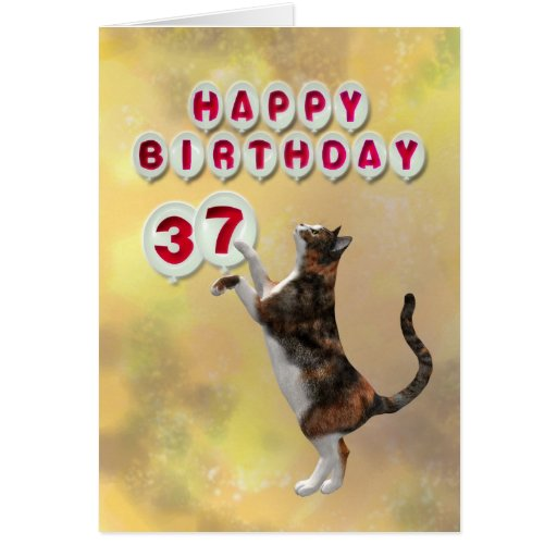 Playful cat and 37th Happy Birthday balloons Greeting Card