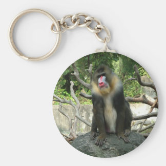 Playful, cute, smart and friendly baboons keychain