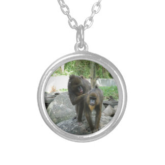 Playful, cute, smart and friendly baboons jewelry
