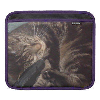 Playful Dave iPad pad Horizontal iPad Sleeve