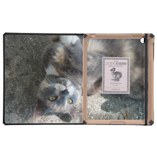 Playful Dilute Tortoiseshell Cat Cover For iPad