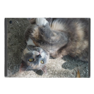 Playful Dilute Tortoiseshell Cat Cases For iPad Mini