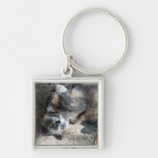 Playful Dilute Tortoiseshell Cat Key Chains