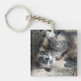 Playful Dilute Tortoiseshell Cat Keychains
