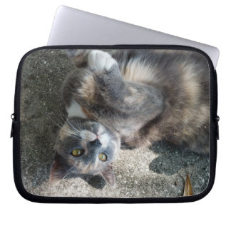 Playful Dilute Tortoiseshell Cat Laptop Sleeves