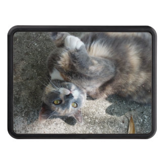 Playful Dilute Tortoiseshell Cat Hitch Cover