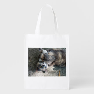 Playful Dilute Tortoiseshell Cat Market Tote