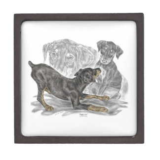 Playful Doberman Pinscher Puppies Jewelry Box