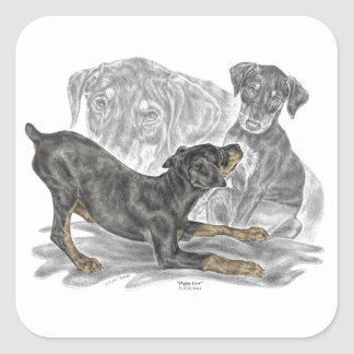 Playful Doberman Pinscher Puppies Square Sticker