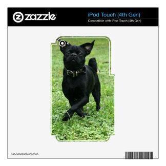 Playful Dog iPod Touch 4G Skin