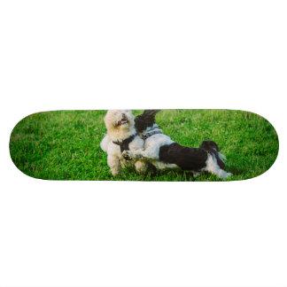 Playful dogs skate board deck