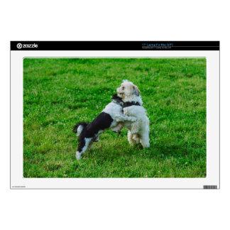 "Playful dogs 17"" laptop skins"