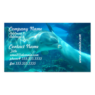 Playful Dolphins Business Cards