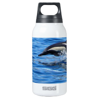 Playful Dolphins Insulated Water Bottle