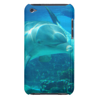 Playful Dolphins iTouch Case iPod Touch Cases