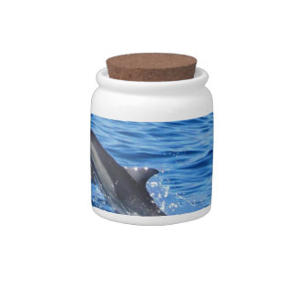 Playful Dolphins Jar Candy Jar