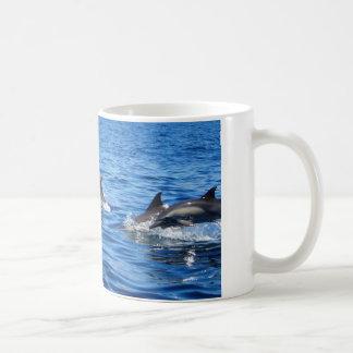 Playful Dolphins Mug