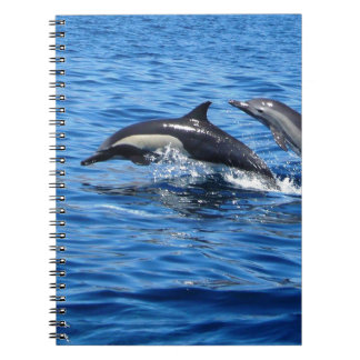 Playful Dolphins Notebook