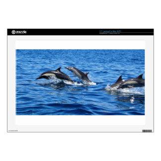 "Playful Dolphins 17"" Laptop Skin"