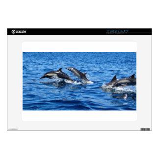 Playful Dolphins Laptop Skins