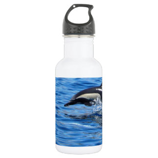 Playful Dolphins Water Bottle
