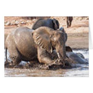 Playful Elephant Cards