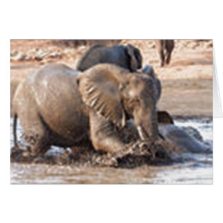 Playful Elephant Greeting Card