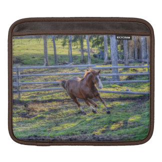 Playful, Energetic Chestnut Horse Equine Photo 2 iPad Sleeves