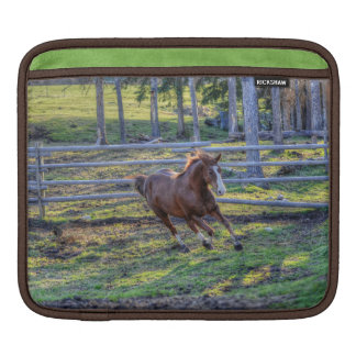 Playful, Energetic Chestnut Horse Equine Photo 2 Sleeve For iPads