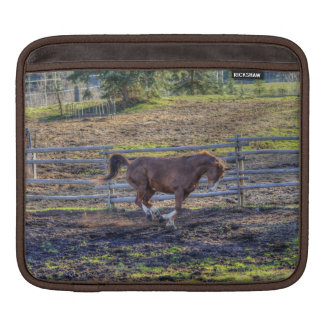 Playful, Energetic Chestnut Horse Equine Photo 3 Sleeve For iPads