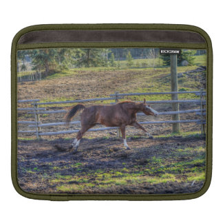 Playful, Energetic Chestnut Horse Equine Photo Sleeves For iPads