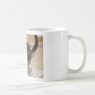 Playful Flurry Coffee Mug