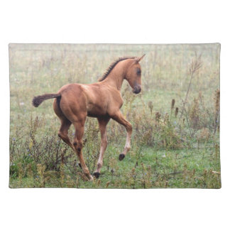 Playful foal placemat