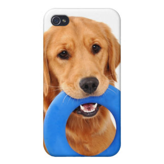 Playful Golden Retriever Cover For iPhone 4