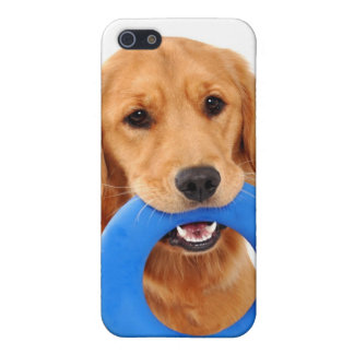Playful Golden Retriever Covers For iPhone 5