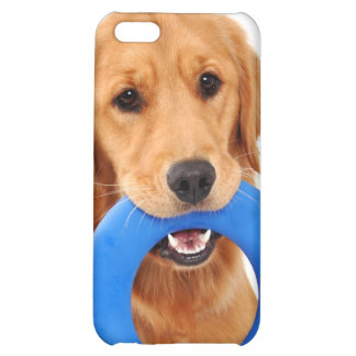 Playful Golden Retriever iPhone 5C Cover