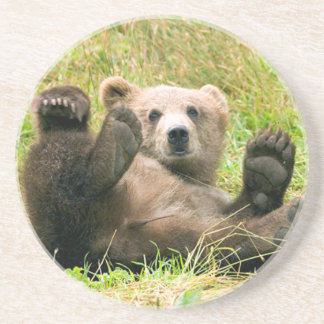 Playful Grizzly Bear Coaster